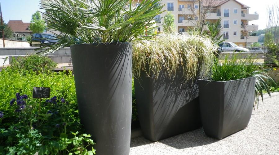Location de plante, fleuriste à Ruy et à Bourgoin