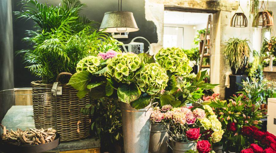 la fontaine fleurie, fleuriste à Bourgoin et à Ruy